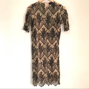 NWT Caara sheer lace overlay dress